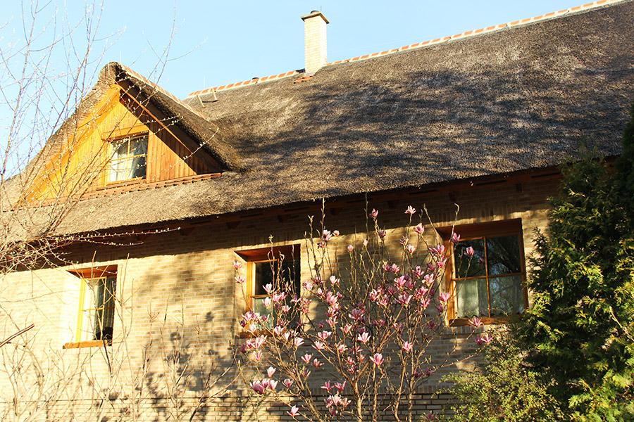 Haus mit Reedmax Schilfdach
